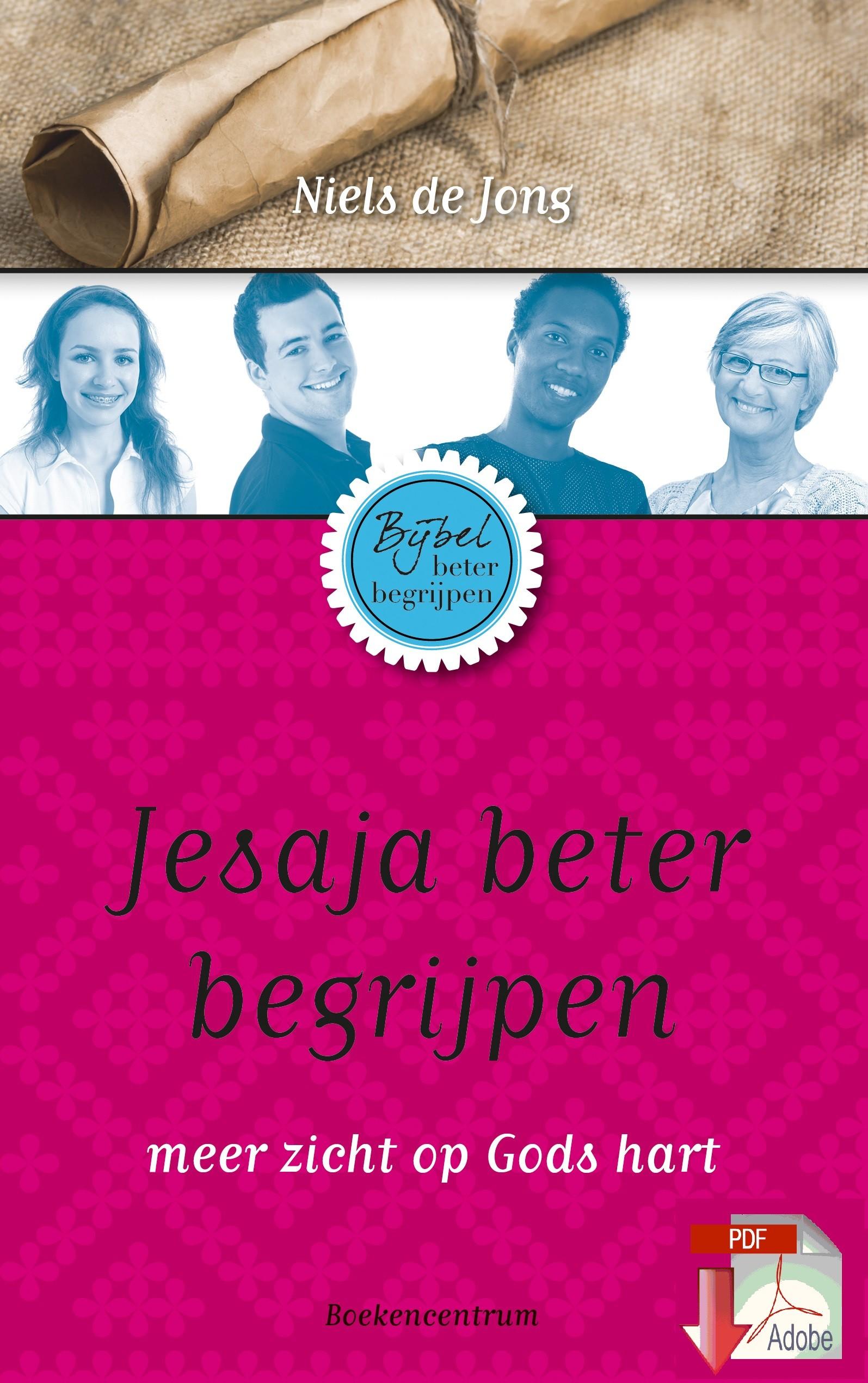 Het boek Jesaja beter begrijpen van Niels de Jong