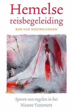 Het boek hemelse reisbegeleiding van Rob van Houwelingen